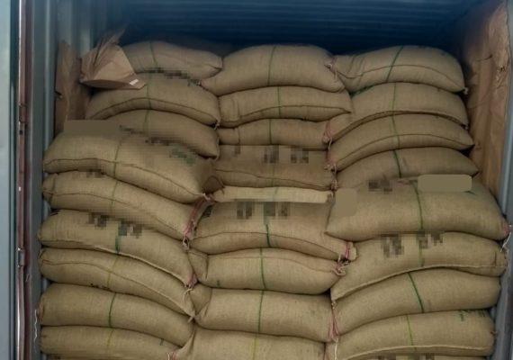 Receita encontra mais de 300 quilos de cocaína no Porto de Santos