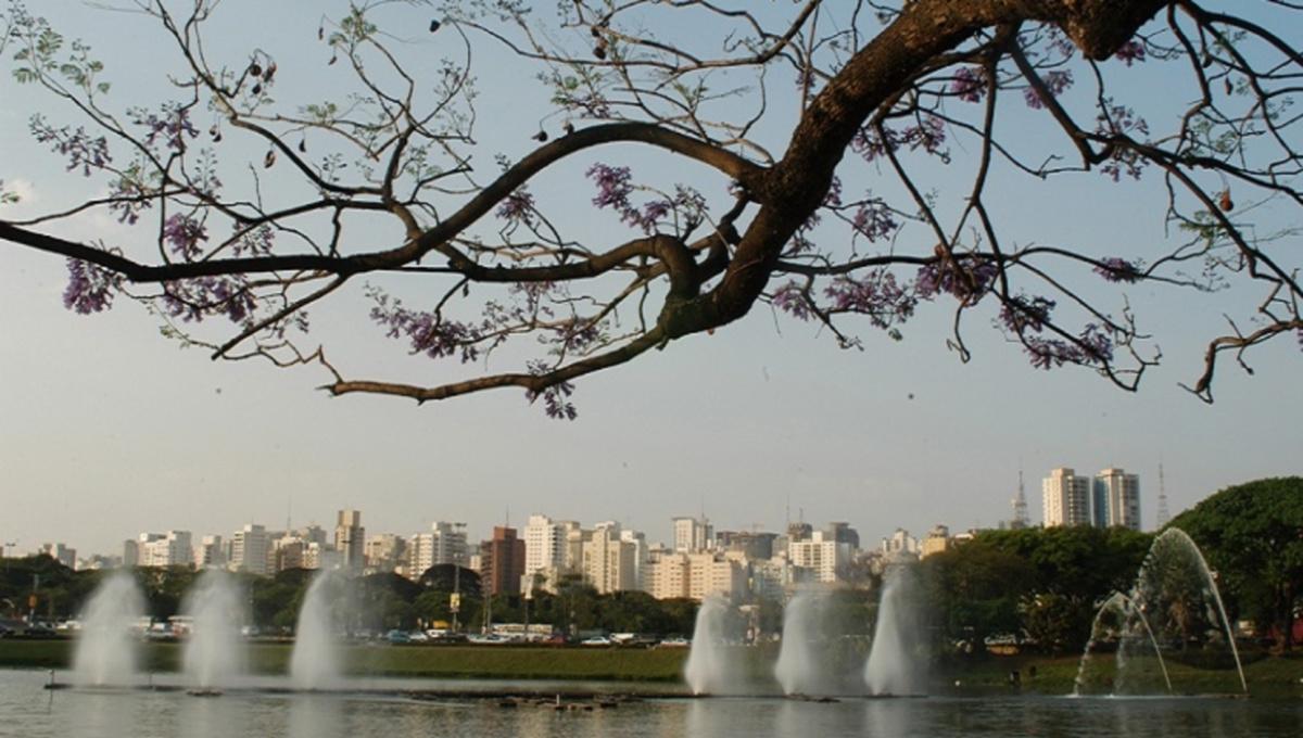 Parque do Ibirapuera (Arquivo)
